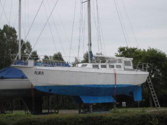 Reinke S10