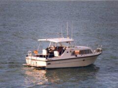 Shetland Cruiser 22